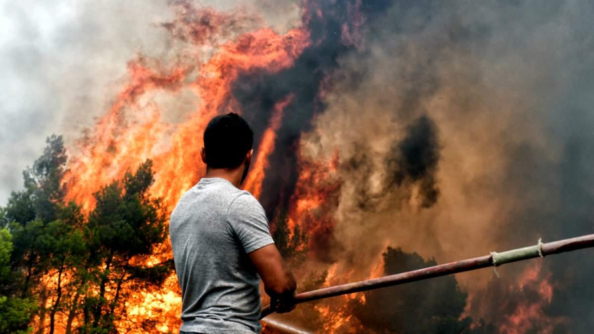 Ανακοίνωση ΜΕΚΕΑ: Οι επαναλαμβανόμενοι εμπρησμοί που μετατρέπονται σε Εθνική καταστροφή είναι η τραγική συνέπεια μιας χώρας που κατάντησε Προτεκτοράτο