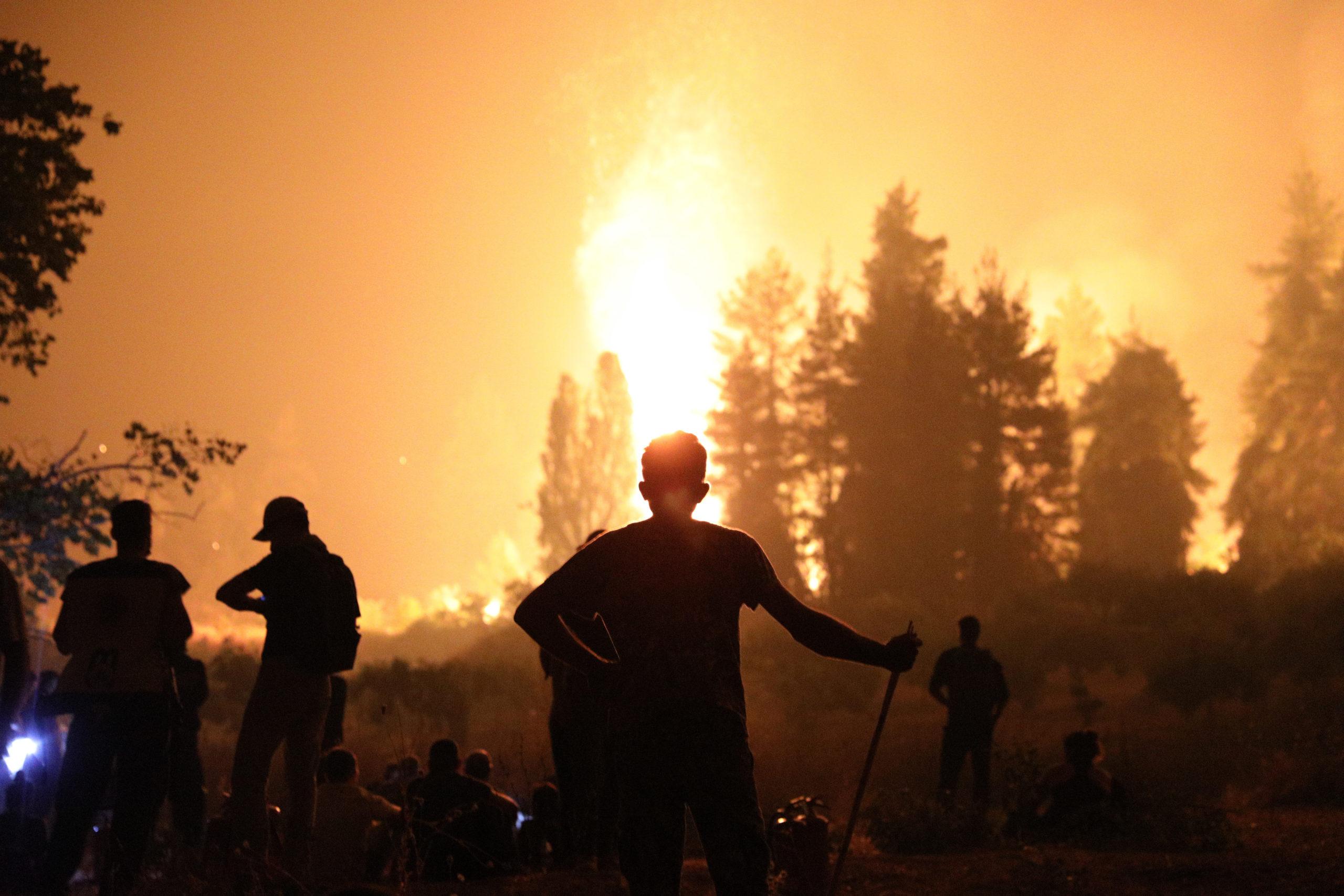 Οι «Πράσινες» Πυρκαγιές, του Σάκη Αδάμ (μέλους του ΜΕΚΕΑ)